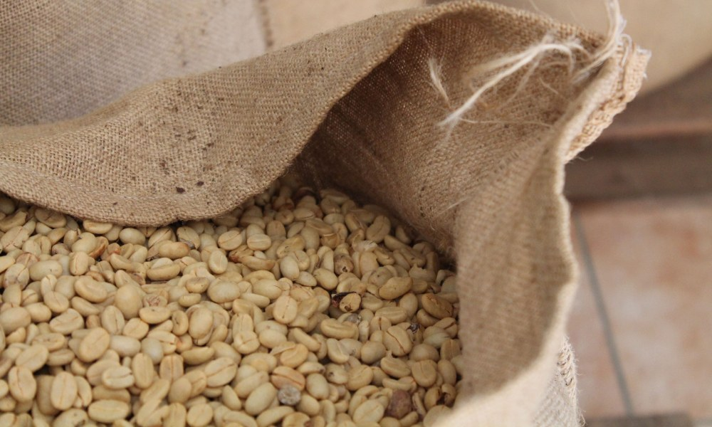 A guide to sourcing high-quality green coffee