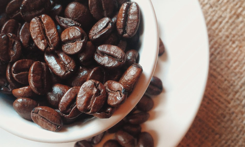 Are oily coffee beans a problem?